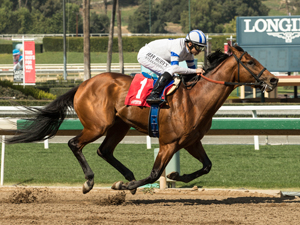 Haskell contender