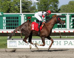 galloping horse and rider