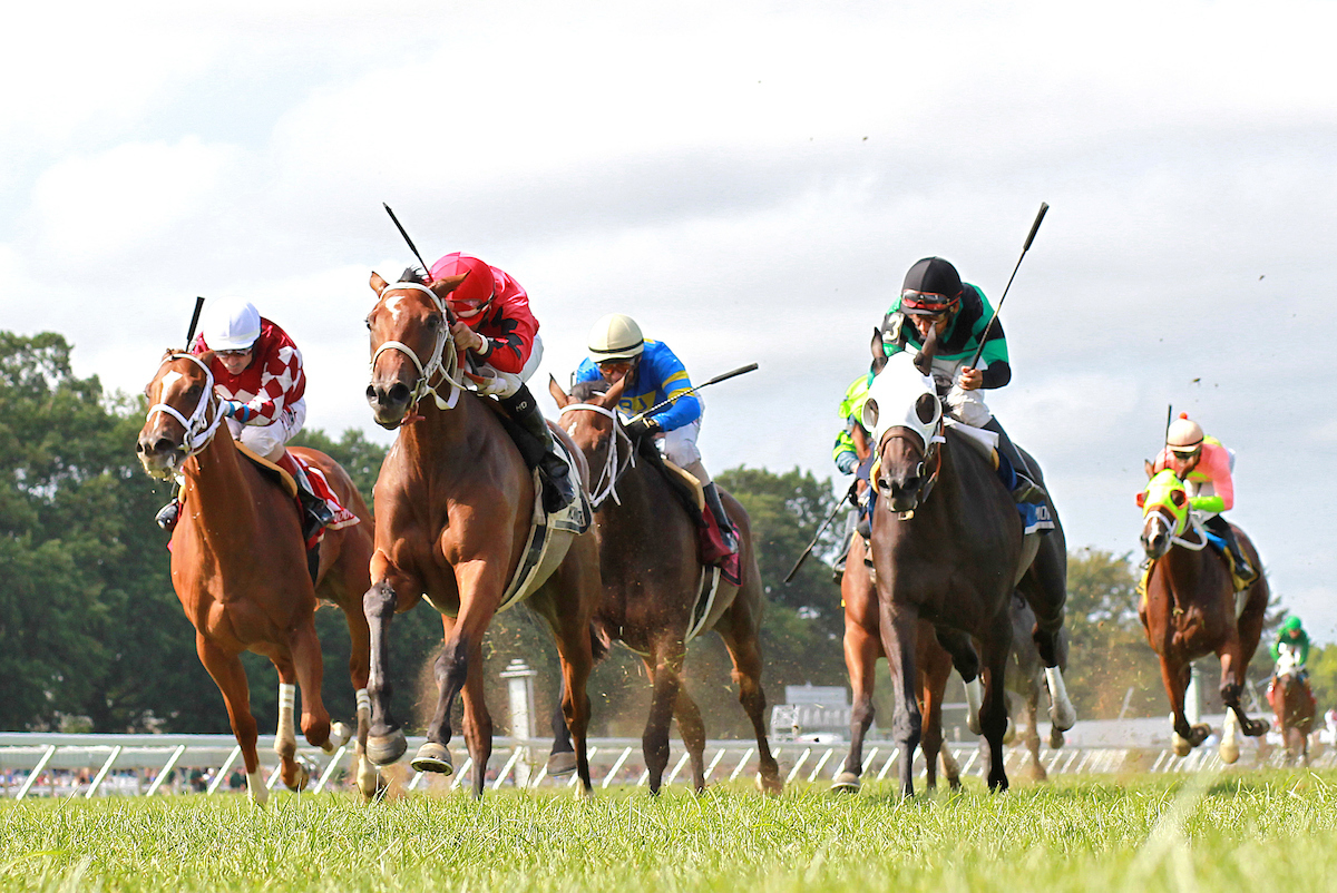 close up of horses racing